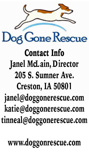 ad dog gone rescue